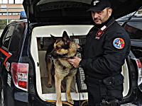 carabinieri-cinofila-2017