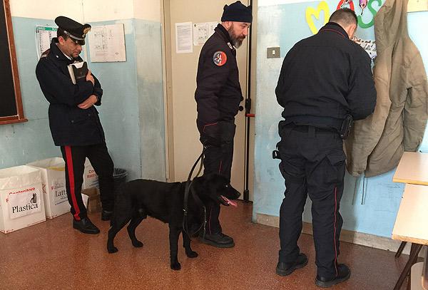 carabinieri-lodi-cani-anti-droga-lodi-notizie