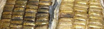 hashish-700-kg-melegnano