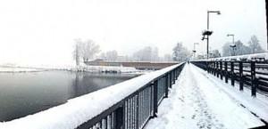 neve ponte