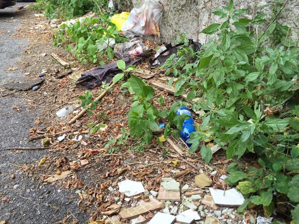 piarda-ferrari-sporcizia-rifiuti-lodi-notizie
