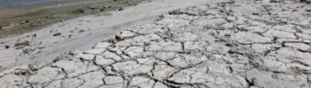 siccita-fiume-po-lodi-notizie