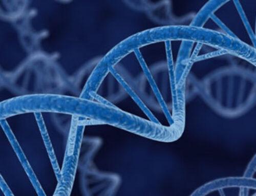 Dopo 10 anni il DNA incastra ladro georgiano