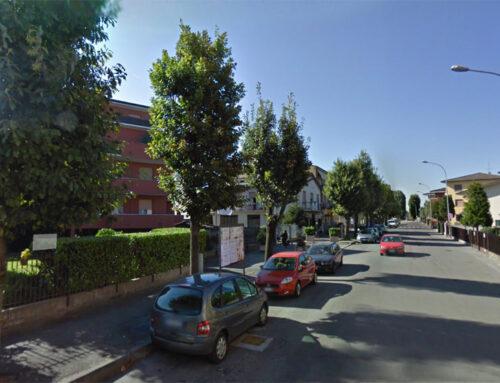 Lettere – Verde pubblico a Sant'Angelo. Un albero sostituito non vale un nuovo alberello